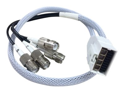 Cisco Smart Antenna Connector to RP-TNC Cable, 2ft