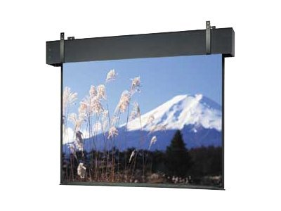 Da-Lite Professional Electrol Projection Screen, Matte White, 16:9, 271