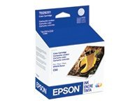Epson Stylus C60 Color Ink Cartridge (T029201), T029201, 241045, Ink Cartridges & Ink Refill Kits