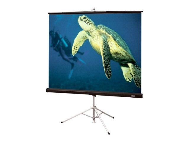 Draper Diplomat Portable Projection Screen, HC Gray, 4:3, 100, 213029, 7781903, Projector Screens