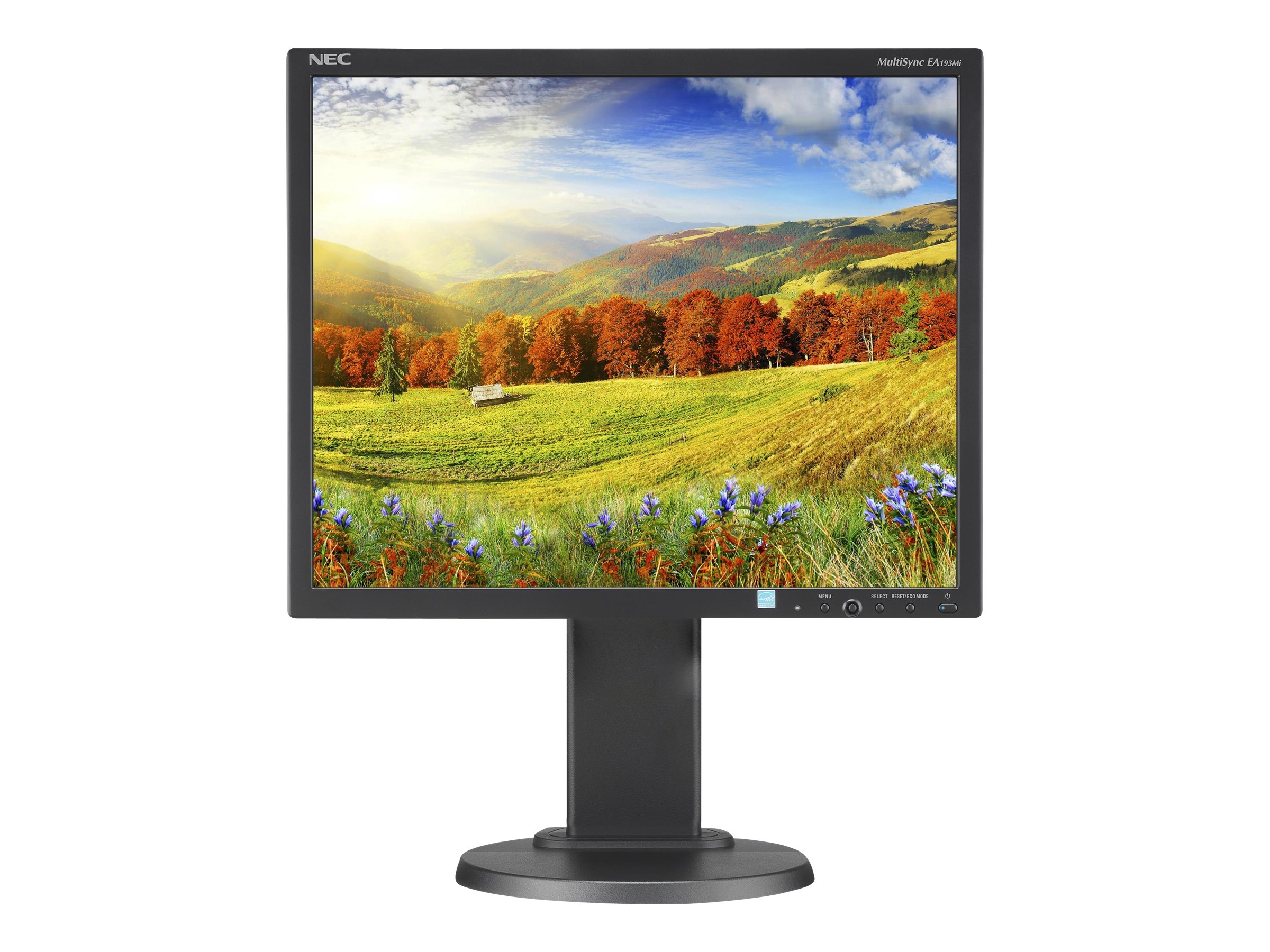 NEC 19 EA193MI-BK LED-backlit Desktop Monitor, Black w  IPS Panel and Integrated Speakers, EA193MI-BK