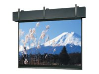 Da-Lite Professional Electrol Projection Screen, Matte White, 4:3, 325