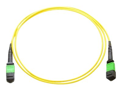 Axiom MPO to MPO F F 9 125 Singlemode Fiber Optic Cable, 10m