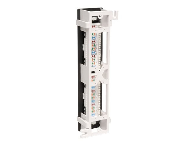 Tripp Lite 12-Port Cat5e Cat5 Wall Mount Patch Panel 568B 110 Punch TAA, N050-012