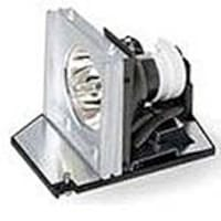Acer Replacement Lamp for P5271 Projector, EC.J8700.001, 11587126, Projector Lamps