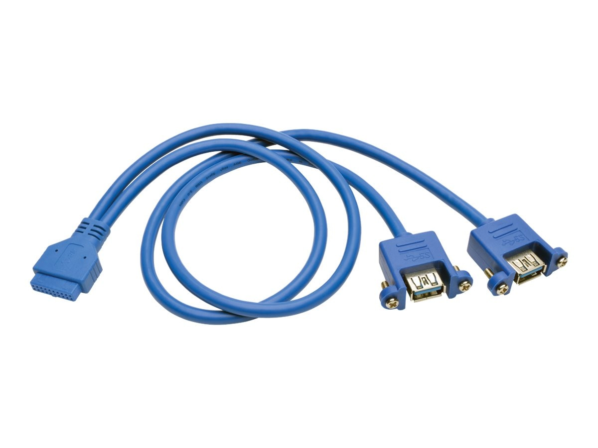 Tripp Lite 20-Pin Motherboard IDC to 2x USB Type-A Panel Mount Adapter Cable, Blue, 18