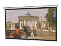 Da-Lite Model B Projection Screen, Matte White, 16:10, 109