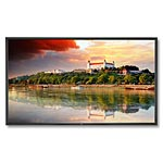NEC 84 X841UHD Ultra HD LED-LCD Display, Black, X841UHD, 17898523, Monitors - Large-Format LED-LCD