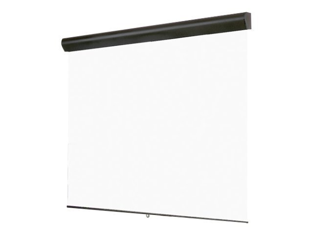 Draper Silhouette Series M Manual Projection Screen, Matte White, 16:10, 109