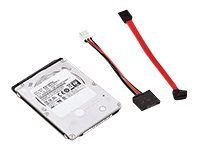 Ricoh Hard Drive Option Type P10 for Locked Hold