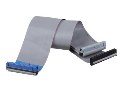 Tripp Lite Enhanced 80-Conductor IDE (EIDE) Ribbon Cable for (2) Drives - (3) 40-pin EIDE F Connectors, 18, P906-18I, 4900938, Cables