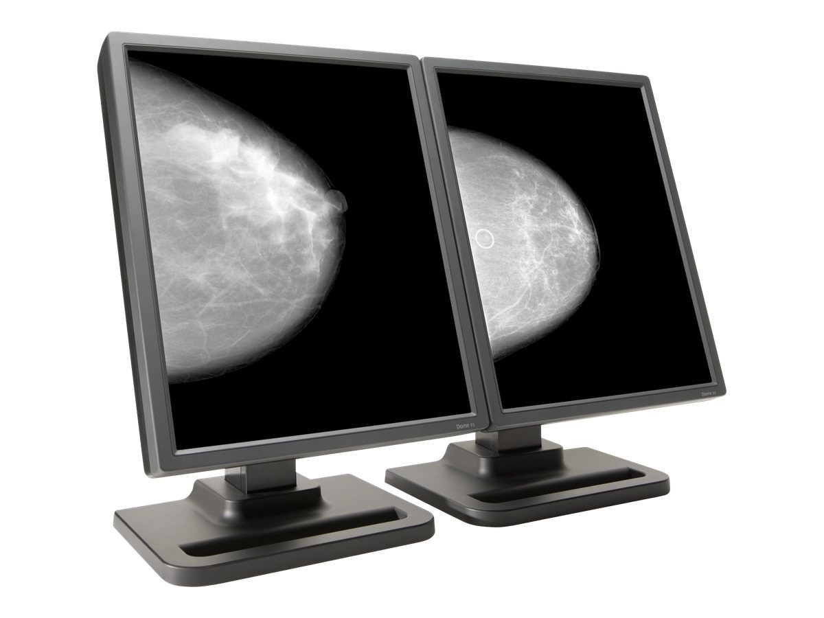 NDS 21.3 Dome E5 Dual-Head Grayscale Display with Quadro K2000D Graphics, 997-5715-00-2FN, 16203048, Monitors - Medical