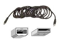 Belkin Gold Series USB Cable, USB Type A to USB Type B (M-M), 16ft, F3U133V16, 9465154, Cables