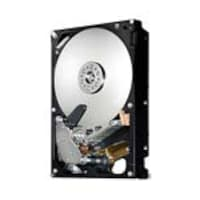 HGST 2TB SATA 3GB S 7.2K RPM 3.5 Enterprise Hard Drive, HUA722020ALA331, 31786579, Hard Drives - Internal