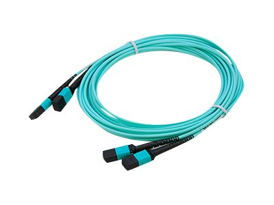 ACP-EP MPO MPO Female to Female Straight OM4 12 Fiber LOMM Patch Cable, 25m, 2-Pack