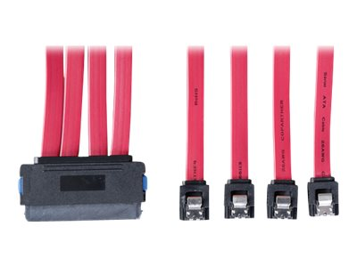 Tripp Lite 4-in-1 32-Pin (SFF-8484) to 4 x 7pin Cable, Red, 1m