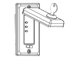 Draper LVC-S Wall Switch with Locking Cover Plate (110V), 121232, 33737092, Projector Screen Accessories