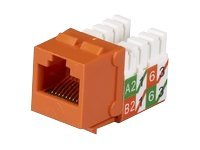 Black Box GigaTrue2 Cat6 Jack, Orange 25P