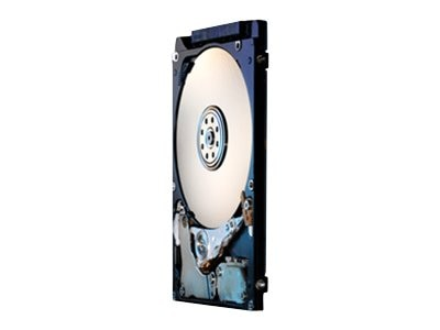 HGST 320GB TravelStar SATA 7.2K RPM 2.5 Internal Hard Drive