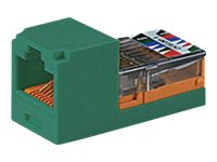 Panduit Mini-Com Module Cat5E, Green