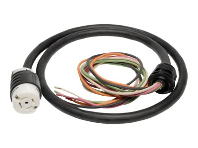 Tripp Lite 208V 3-Phase Whip, 10ft, w  L21-30R Output for 3-Phase Distribution Cabinet Applications