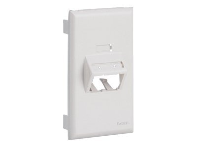 Panduit Ultimate ID SnapOn Faceplate - Vertical Sloped for 2 POS