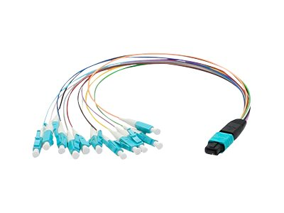 ACP-EP MPO to 12xLC Breakout OM3 LOMM Multicolored Patch Cable, 0.3m