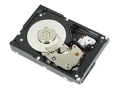 Dell 1TB SAS 12Gb s 7.2K RPM 512n 3.5 Nearline Hot Plug Hard Drive, 400-ALQZ