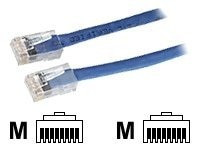 Black Box CAT6 550MHz Solid-Conductor Backbone Cable, Blue, 30ft