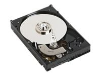 Dell 2TB SATA 6Gb s 7.2K RPM 3.5 Hot Swap Hard Drive, 400-AEGG, 30926621, Hard Drives - Internal