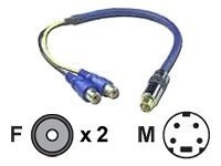 QVS Premium S-Video Male to 2 Female Adapter Cable, 6, CSV2RCAF, 16745664, Cables