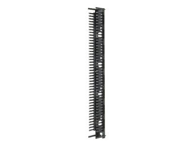 Panduit 45RU 10 Wide PatchRunner Vertical Cable Manager