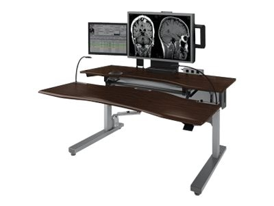Ergotron 60w Steve's Station Advanced for Radiology - Dual, Dark Gray