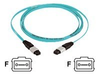 Panduit 12-Fiber Jumper Cable, MTP-MTP, 50 125, Multimode, Aqua, 7m