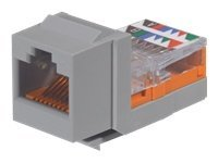 Panduit Cat 5e, 8-Position, 8-Wire Keystone Jack Module, International Gray