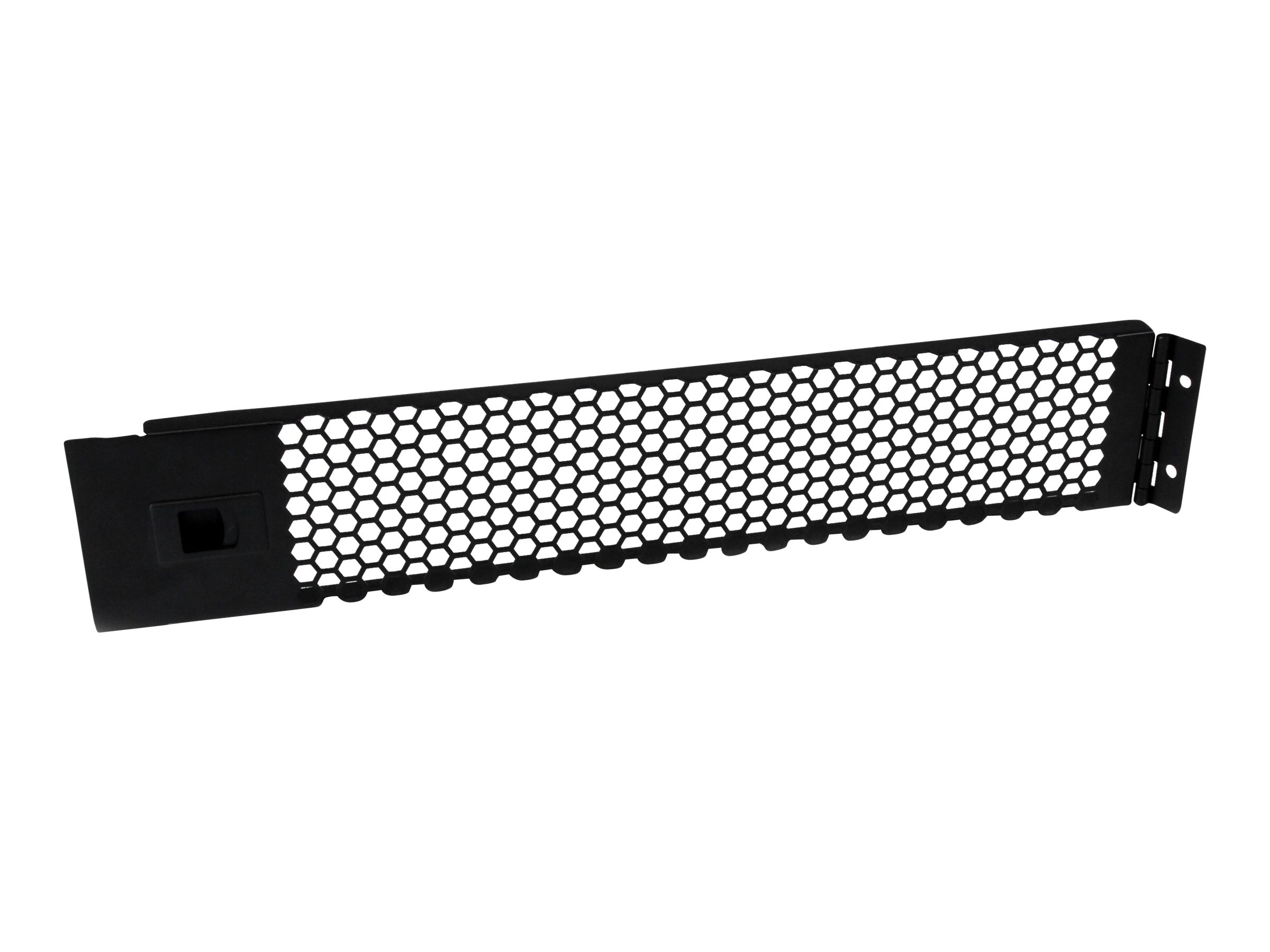 StarTech.com Hinged & Vented Blank Rack Panel, 2U Black