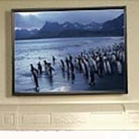 Draper AccuScreeen Fixed Projection Screen, 4:3, 84in, 800015, 7425917, Projector Screens