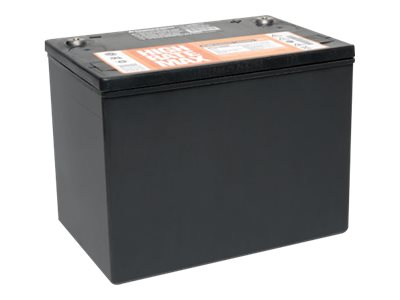 Tripp Lite 12V 75Ah Sealed Maintenance-Free Battery for all APS Models, 98-121, 53519, Batteries - Other