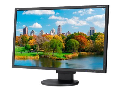 NEC 22 EA223WM-BK Widescreen LED-LCD Monitor, Black, EA223WM-BK