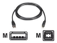 Black Box USB 2.0 Type A to USB Type B M M Cable, Black, 13ft