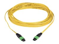 Panduit MTP to MTP Singlemode Plenum Cable, Yellow, 9m, F912D5-5F15Y, 30697751, Cables