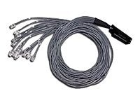 C2G Cat5 25-Pair 180 Degree Telco 50-pin to 12x RJ-45 M M Breakout Cable, 5ft