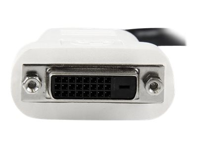StarTech.com DisplayPort to DVI-D M F Adapter, Black, DP2DVI