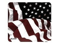 Allsop American Flag Case, 29302, 9799381, Media Storage Cases