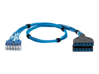 Panduit CAT6 UTP QuickNet Switch Port Harness Cable, Blue, 14ft, QPCSDBBBB14