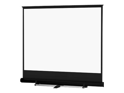 Da-Lite Carpeted Floor Model C Projector Screen, Gray, Square Format, 10' x 10'