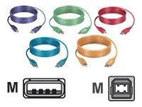 Black Box USB Type A to USB Type B M M Cable, Tangerine, 3ft