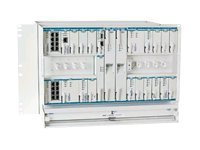 Adtran OPTI-6100 LMX Chassis E 24 Tributary & 2-Slot High Speed
