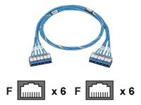 Panduit QuickNet Cat6 UTP Riser Cable, Blue, 40ft