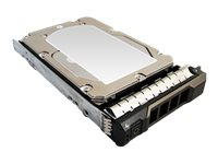 Total Micro 300GB 3.5 SAS Hard Drive w Tray for Dell PowerEdge R710, R720
